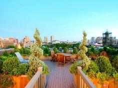 terrasses bois plante jardin sur le toit