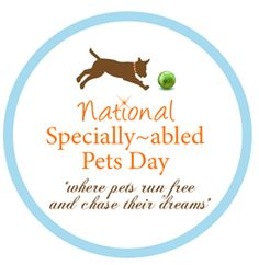 Nationally Specially-abled Pets Day {formerly Disabled Pets Day} was created by Pet Lifestyle Expert Colleen Paige, to celebrate these amazing and heroic animals and to find homes for orphaned & disabled pets on May 3rd...and every day! #PetHoliday