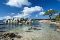 Palombaggia Beach Korsika - http://traveliop.com/palombaggia-beach-korsika/