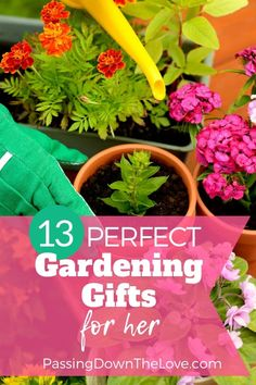 Best Gardening Gifts For Moms Or Grandma