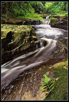 Mpushini Falls in Eshowe, Natal_ South Africa