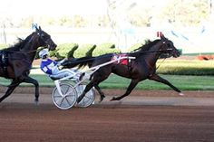 if you have never gone to the harness races, you have to try the Big Red Mile at least once