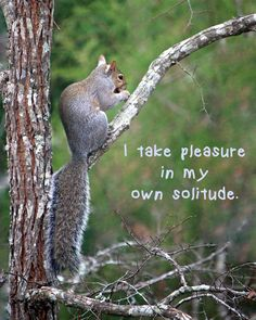 Affirmation about solitude
