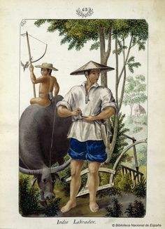 Indio Labrador. Lozano, José Honorato 1821- — Dibujo — 1847
