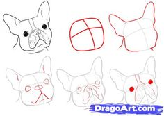 boston terrier portrait tattoo - Google Search
