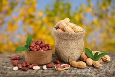 Tous les conseils et astuces pour la culture de la cacahuète facile au jardin ou en pot sur la terrasse ou le balcon. pour accompagner les apéritifs.