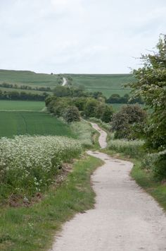 The Ridgeway in the Wiltshire countryside Grande Route, Country Life, Country Roads, Le Havre, English Countryside, Adventure Is Out There, Pathways, Beautiful Places, Scenery