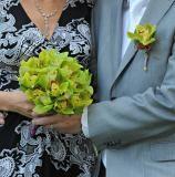 wedding flower Wedding Flowers, Plants, Plant, Planets, Bridal Flowers