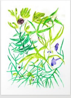 I'm inspired from nature and my travels with dreamy scenery and extraordinary plants. Mediterranean vegetation attracts me a lot, so I can't ignore forms and colors of such beauty and freshness. Here you'll find fig, oleander and other plants. Fig, Scenery, Posters, Illustration, Artwork, Nature, Plants, Inspiration, Paisajes