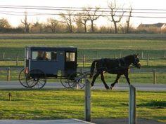 Is Amish Mafia real?