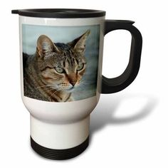 3dRose Tabby Cat Portrait, Travel Mug, 14oz, Stainless Steel
