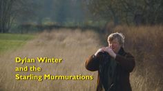 This is an awesome video!!! Dylan Winter and the Starling Murmurations.http://www.youtube.com/embed/88UVJpQGi88