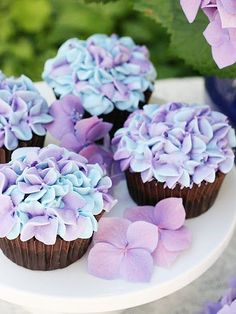 11 Cupcakes (Almost) Too Cute to Eat | HYDRANGEAS | The secret to these showstoppers: Two different colored frostings, a 2D decorating tip and a steady hand. Get the recipe HERE