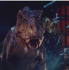 JW T-Rex !