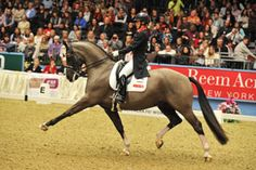 View all the pictures from Horse & Hound's visit to Olympia 2012 to see the Dressage by visiting http://www.horseandhound.co.uk/galleries/v/dressage_001/shows/olympia-2012-dressage/