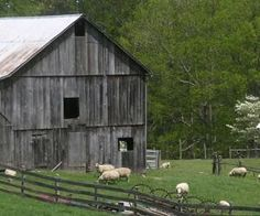 mountain meadow farms by MyLittleCornerOfTheWorld