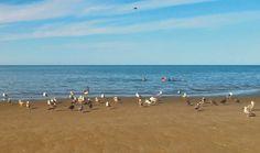Playa de San Felipe, B.C.