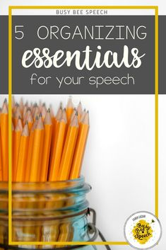 5 essential items for organizing your speech therapy room. Great ideas for how to use different tools to organize your work space.