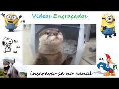 Videos Engraçados e Boas Risadas #3 - YouTube