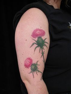 Lovely thistles by Esther Garcia.    http://www.flickr.com/photos/butterfat/3500347876/in/set-72157617675680042/
