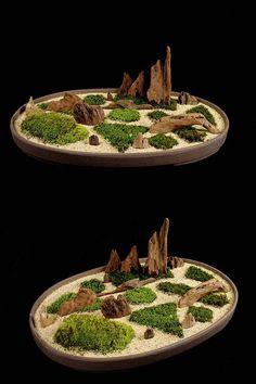Mine looks like this. Moss Terrarium, Terrarium Plants, Moss Garden, Succulents Garden, Pasto Natural, Plants In Bottles, Moss Plant, Plantas Bonsai, Mini Bonsai