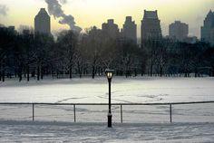 Der Central Park im Winter.
