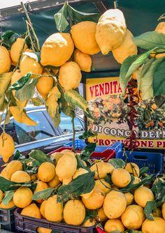 Lemons on the Amalfi Coast in Italy. #amalficoast #italy #travel