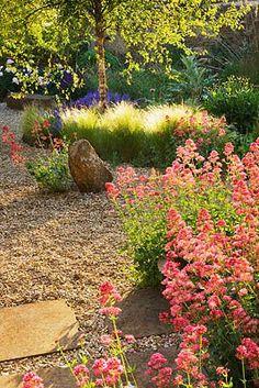 Garden • gravel path