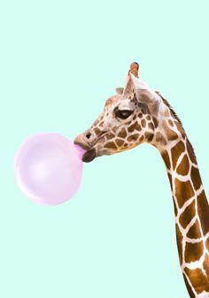 giraffe, bubble gum, candy, animal...