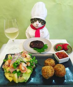 A Costumed Cat Dresses as the Chef of Beautifully Prepared Meals From All Over the World