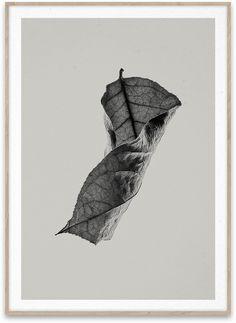 Sabi Leaf 04 Poster von der  Künstlergruppe Norm Architects. Erfahre mehr unter www.paintthings.de