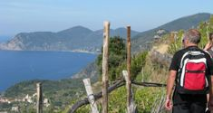 Wondering what hiking Cinque Terre trails is like? My post shows you Cinque Terre, Italy with its five villages and hiking trails. Cinque Terre, Hiking Trails, Trips, Europe, Italy, Mountains, Nature, Travel, Traveling