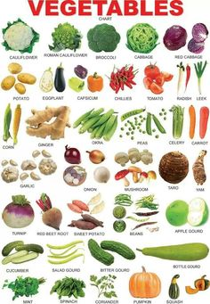 Vocabulary : Vegetables