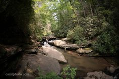 Cove Creek near the top of Big Bradley Falls in Saluda, North Carolina. See this Instagram photo by @ashevillephotography