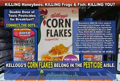 Kelloggs cornflakes contain such a high level of pesticides/RoundUp it can be a difficult call whether they belong in the cereal or pesticide section of the store.