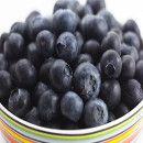 Cardo, propiedades nutricionales y beneficios del consumo de esta verdura | ECOagricultor