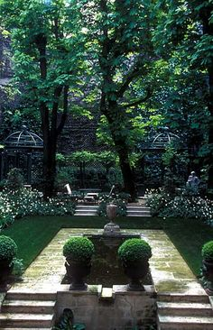 // Great Gardens & Ideas //