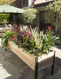 2' x 8' Elevated Cedar Planter Box