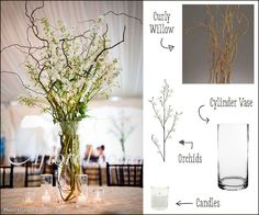 DIY Centerpiece.  Curly Willow adds height to a table and creates a great look.