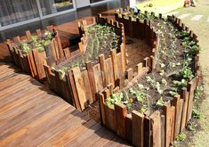 We are going to craft reused wood pallet in to pallets wooden raised garden to change the flavor of our garden. Interesting pallet reusing ideas to enhance home look are here of your convenience. Style out this project your own in economical and lavishing style. Presence of such craft creates a rustic, natural and tidy environment.