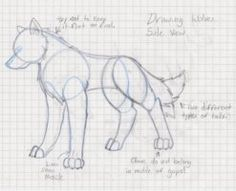 how to draw wolf legs - Google Search