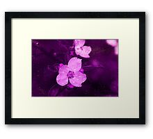 flowers in the rain  Framed Print by Andrew Hunter