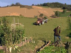 Bolognashire: vita tra campi e orti