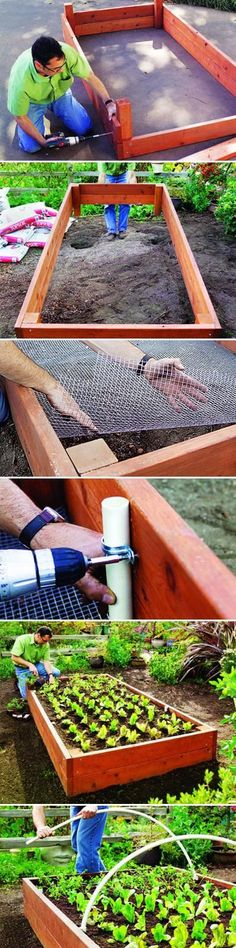The materials for a the raised bed: One 6-foot-long 4-by-4 Six 8-foot-long 2-by-6s One 10-foot-long 1-inch PVC pipe Two 10-foot-long...