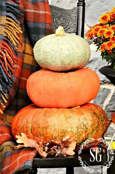 To keep pumpkins fresh, give them a bath in water with a bit of bleach and keep them out of direct sunlight. More tips and advice from Yvonne at StoneGable blog. || @stoneg