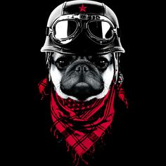 The Adventurer Pug is a T Shirt designed by clingcling to illustrate your life and is available at Design By Humans