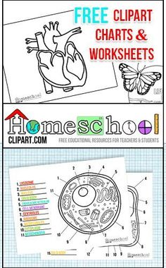 Free Science Charts & Worksheets