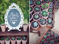 Eco-Chic Texas Wedding: Succulent Plant Favors -- so u bren! Cute Wedding Ideas, Chic Wedding, Wedding Trends, Rustic Wedding, Our Wedding, Dream Wedding, Wedding Inspiration, Garden Wedding, Succulent Wedding Favors