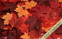 Package of about 120 silk maple leaves in assorted deeper autumn colors. Our Price:  Price was:	$9.99  $15.99 Decorate your fall wedding with these artificial silk maple leaves.
