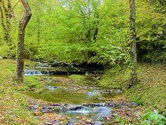 Southwest Virginia - stream running beside the Virginia Creeper Trail